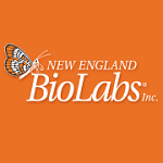 NEB- BioLabs- restriction enzymes